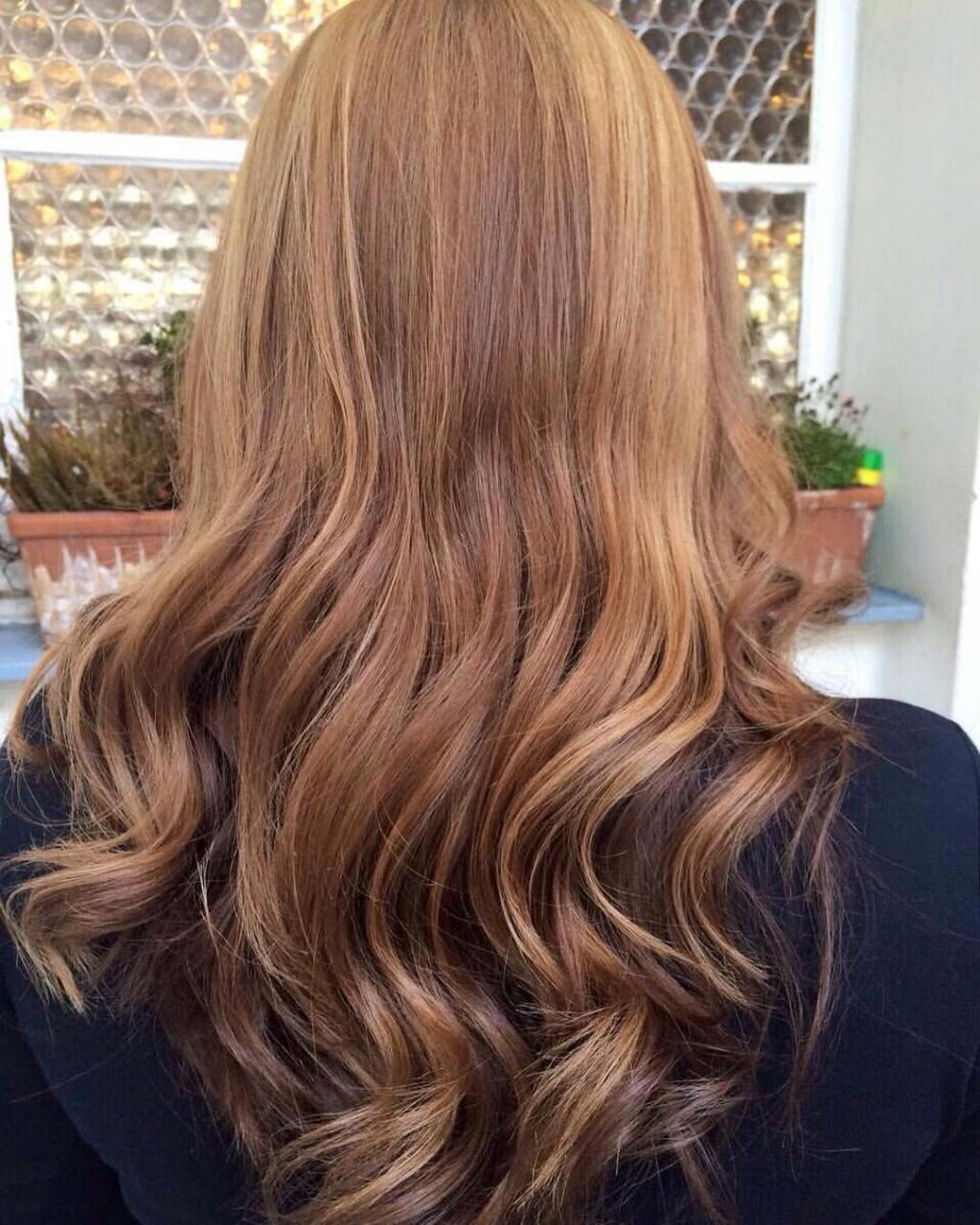 Balayage Painting Highlights